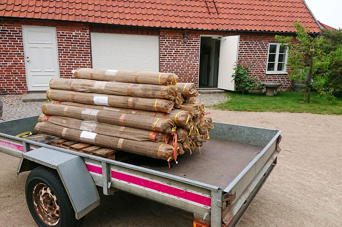 Bamboo delivery on a trailer.