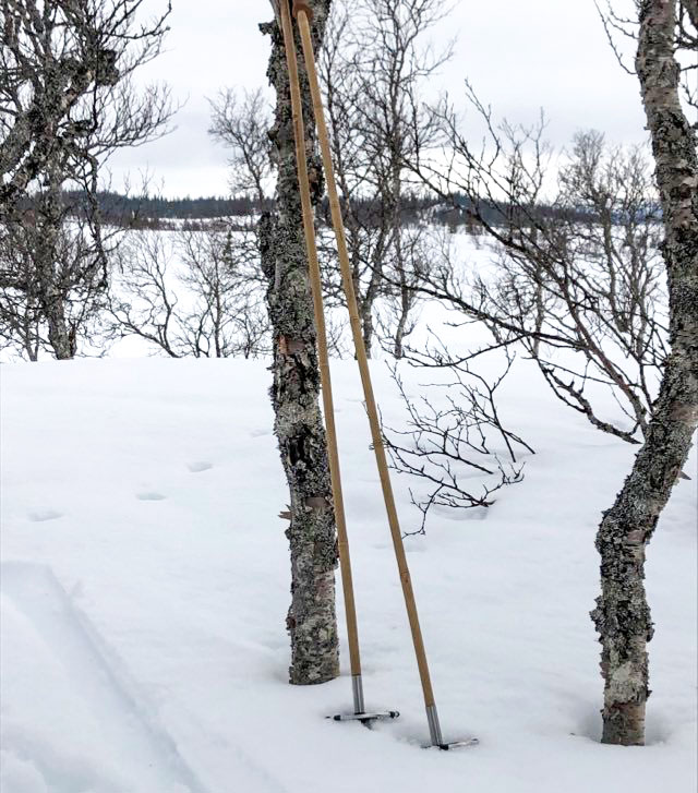 The 147 cm long touring poles with a big basket being tested in Vålådalen.